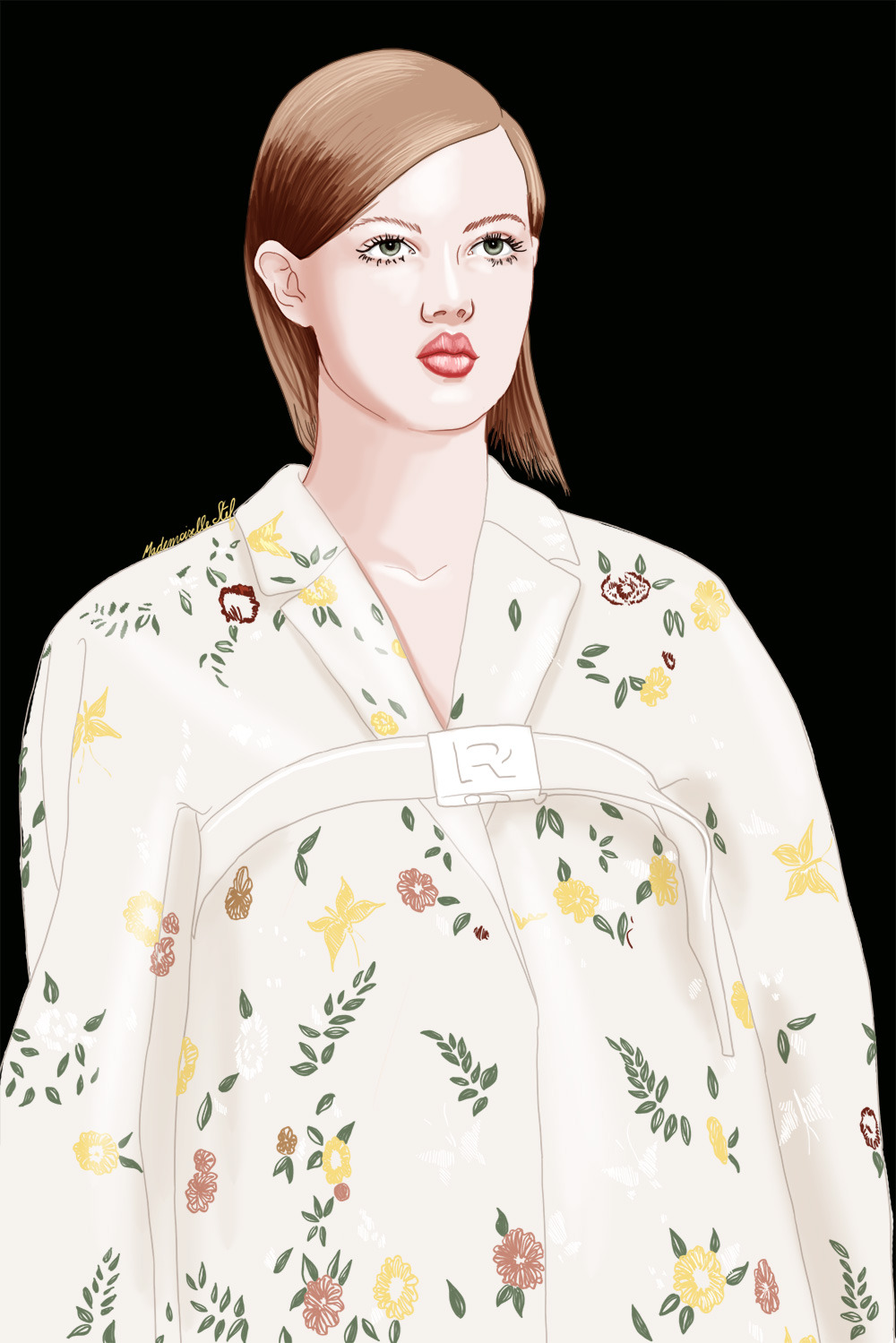 illustration rochas